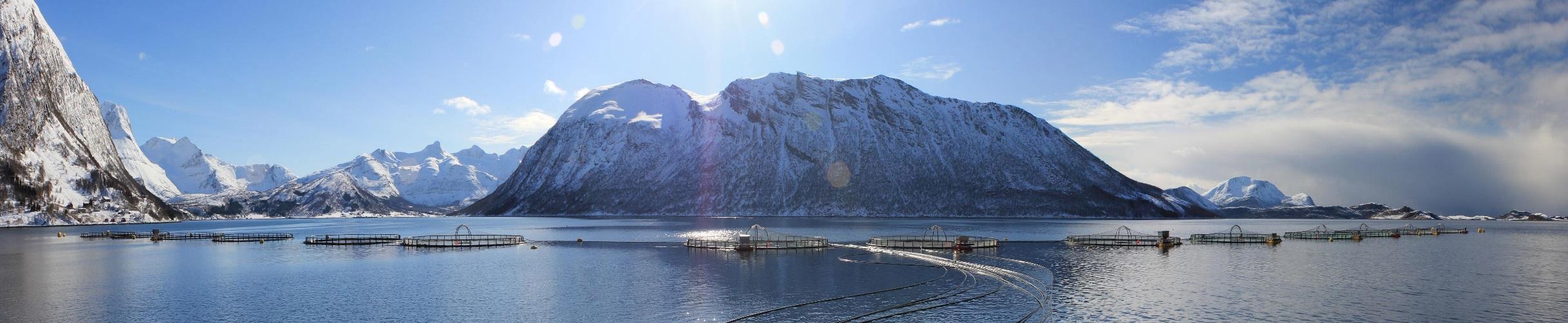 Kvarøy-Fiskeoppdrett.jpg