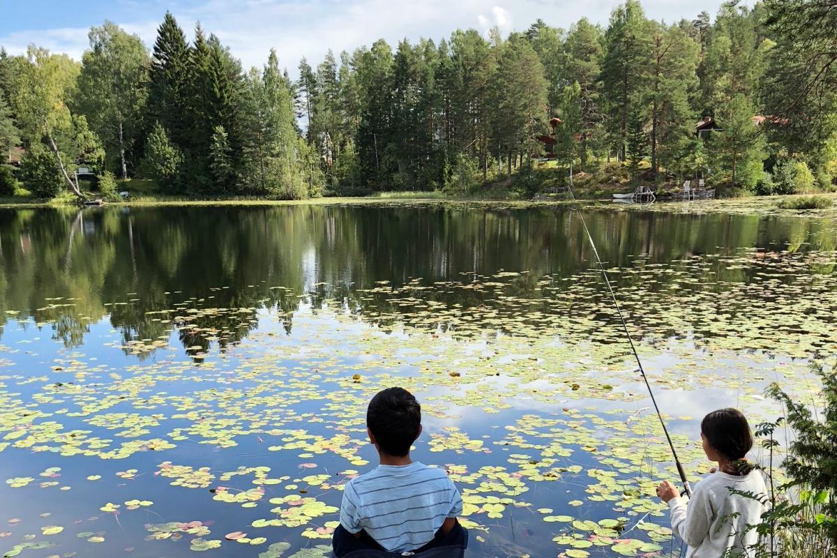 fiske1200x800.jpg